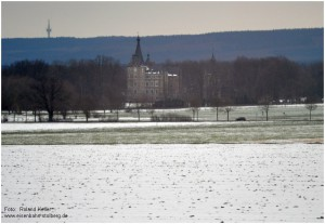 2013_03_15_Schloss_Merode_Blick_aus_Zugfenster_x3_F