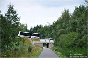 2013_08_20_zwRaerenuRoetgen_Vennbahnradweg_Querung_Himmelsleiter_x8_F