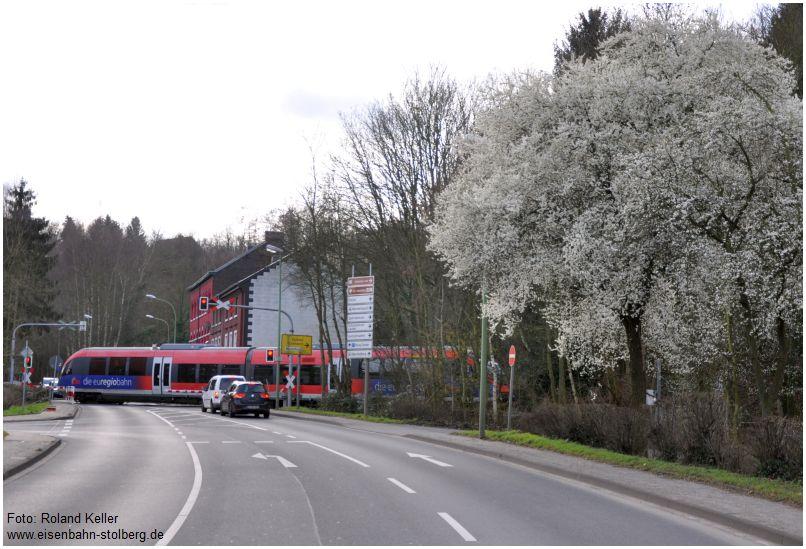 2016_02_06_Stolberg_Europastrasse_BR643_bluehender_Baum_x5_F